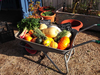 Fresh seasonal vegetables in a barrow