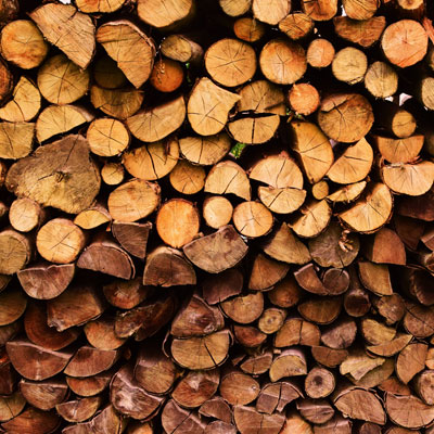 Logs piled up in log store